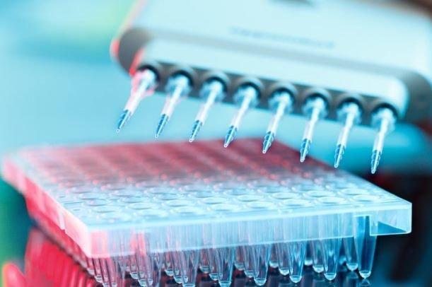 فاز دوم سلول درمانی بیماران کرونایی در کشور شروع شد