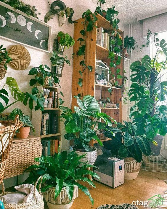 هدایت و آنالیز ایده های تزیین خانه با گل طبیعی