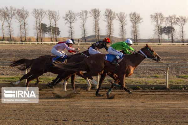 خبرنگاران برترین های مسابقات کورس اسب کشوری در اهواز معین شدند