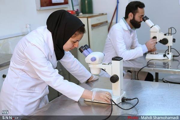 31 خرداد؛ آخرین فرصت استفاده محققان از چهار گرنت علوم پزشکی